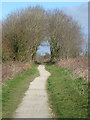 TA1843 : Hornsea Rail Trail near Great Hatfield by Paul Harrop