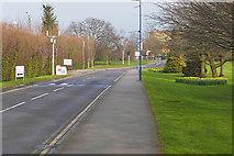 SU9850 : Surrey University access road by Alan Hunt