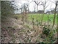 SE3303 : Railway boundary fence, west of Worsbrough by Christine Johnstone