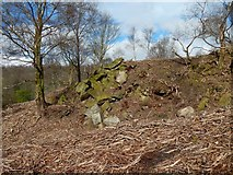 NS4277 : Spoil outside disused quarry by Lairich Rig