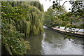 SU6470 : River Kennet by N Chadwick