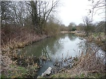 SE3503 : The former Worsbrough branch canal [lower level] by Christine Johnstone