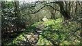 SP6178 : Old Hemplow by Michael Trolove