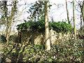 TG1600 : M&E plinth in Hethel Wood by Evelyn Simak