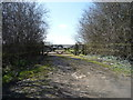 TL0633 : Farm track off Barton Road by JThomas