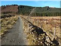 NS3582 : Path to Goukhill Muir by Lairich Rig