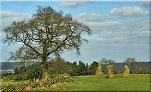 SK2262 : Nine Stone Close Stone Circle by Brian Frost
