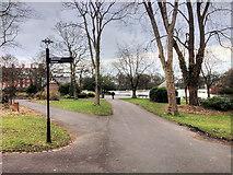 NZ2465 : Leazes Park (10) by David Dixon