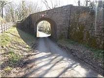 SX7979 : Disused railway bridge over Lower Knowle Road by David Smith