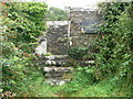 SH4149 : Ffynnon Beuno - Beuno's Well by Eirian Evans