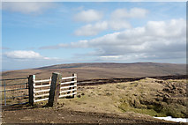 NY8235 : Gatepost at Coldberry End by Trevor Littlewood