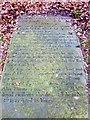 SD7411 : Veteran of the Battle of Waterloo by Philip Platt