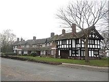 SJ3384 : Houses, Primrose Hill, Port Sunlight by Graham Robson