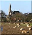 TA0245 : Field by Scorborough Lane by Paul Harrop