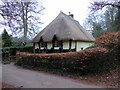 SX8963 : Thatched Cottage, Cockington by PAUL FARMER