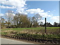 TM1555 : Footpath to Helmingham Road by Geographer