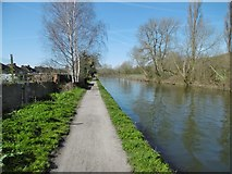 TQ1684 : Perivale, towpath by Mike Faherty