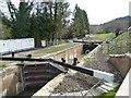 SO8503 : Ham Mill Lock, Thames & Severn Canal by Christine Johnstone