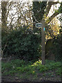 TM1556 : Byway sign off Ipswich Road by Adrian Cable