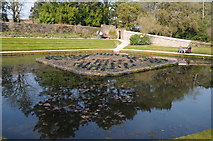 SX4268 : Pond at Cotehele by Philip Halling
