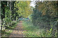 SU5966 : National Cycle Route 4 and the Kennet & Avon Canal by N Chadwick