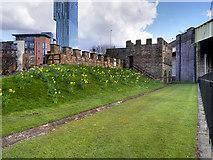 SJ8397 : Roman Ramparts and Gate Tower, Castlefield by David Dixon