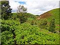 NZ9200 : Two Moors Meet by Scott Robinson