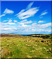 NZ9102 : Mires Slack View by Scott Robinson