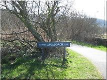 SH6214 : This is it-Mawddach Trail, Gwynedd by Martin Richard Phelan
