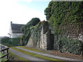 S7241 : Galmoy Castle by kevin higgins