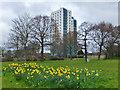 TA1232 : Bayswater Court, Bellfield Avenue, Kingston upon Hull by Bernard Sharp