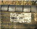 ST7256 : Eighteen Mile Bridge by Derek Harper