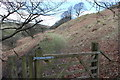 SO1807 : Old dramroad, hillside, Silent Valley Local Nature Reserve by M J Roscoe