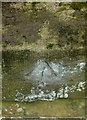 SP9699 : Bench mark, railway bridge near Wakerley by Alan Murray-Rust