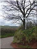 SS8302 : Fannys Lane Cross, near Sandford by David Smith