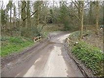 SS8503 : Bridge in The Broxfords woodland by David Smith