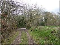 SS8503 : Track by the southern edge of The Broxfords by David Smith