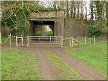 SP9599 : Former railway bridge at Wakerley by Alan Murray-Rust