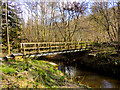 SE8286 : Foot Bridge over Pickering Beck by Scott Robinson