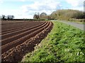 SO8645 : Potato field by Philip Halling
