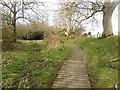 NZ1494 : Footpath west of Longhorsley by Graham Robson
