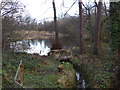 SP1581 : Former mill pool, Solihull by Chris Allen