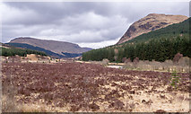 NN2327 : Scrubland in Glen Lochy by Trevor Littlewood