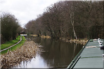 SK0305 : Wyrley & Essington Canal near Becks Bridge by Stephen McKay