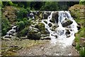 SP4315 : The Cascades on the River Glyme by Steve Daniels