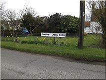 TM0659 : Thorney Green Road sign by Adrian Cable