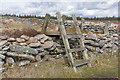 SX6475 : Stile over wall, Dartmoor by Alan Hunt