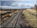 N1620 : Peatland railway near Lough Boora by Oliver Dixon