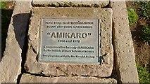 SP2865 : Amikaro Plaque by Jack FitzSimons