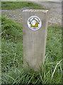 ST4847 : Path marker post by Neil Owen